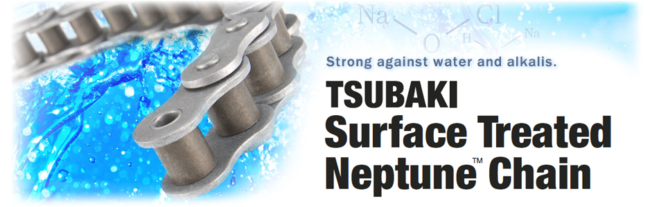 Surface treated Neptune Chain - Tsubaki Australia Pty  Limited